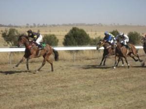 horseracing